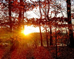 5 Ways to Beat Symptoms of Seasonal Affective Disorder